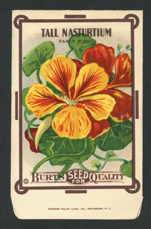 Tall Nasturtium Antique Burt's Seed Packet