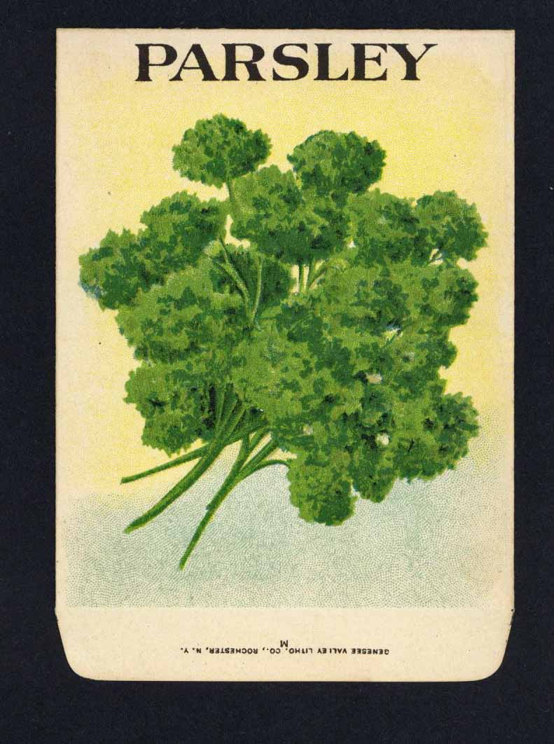 Parsley Antique Genesee Valley Litho. Seed Packet, 278