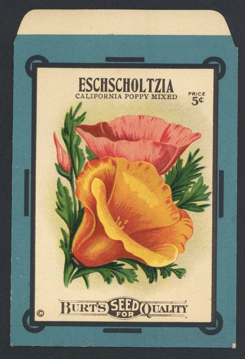 Eschscholtzia Antique Burt's Seed Packet, L