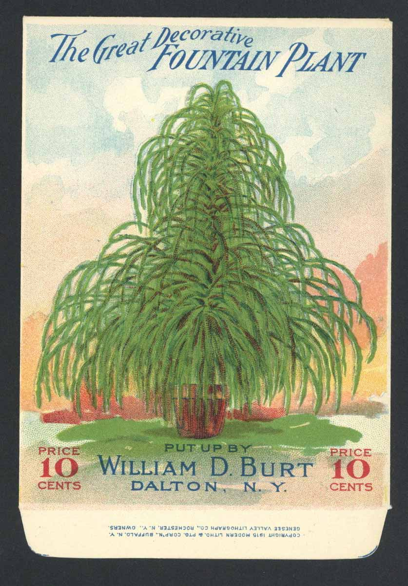 Fountina Plant Antique Burt's Seed Packet, L