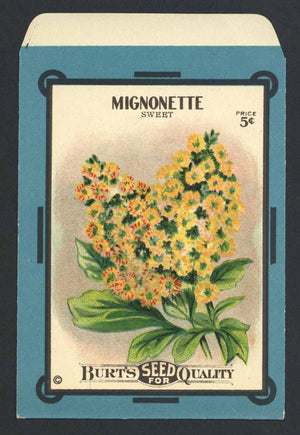 Mignonette Antique Burt's Seed Packet, L