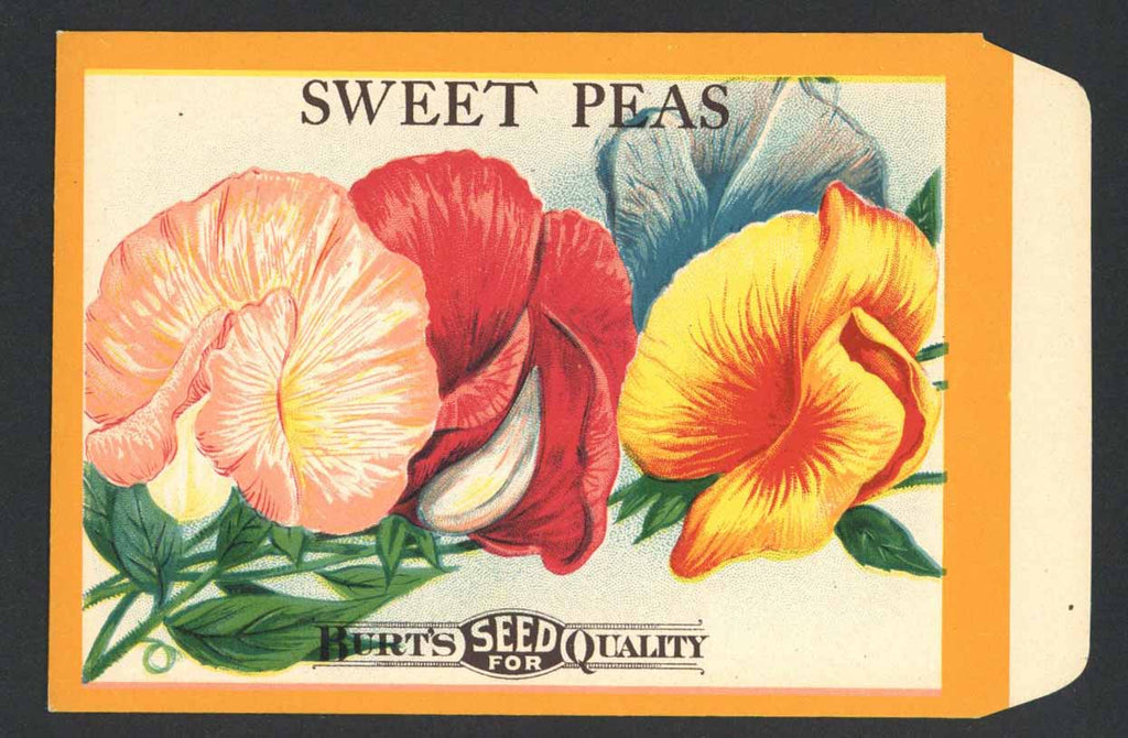 Sweet Peas Antique Burt's Seed Packet, L