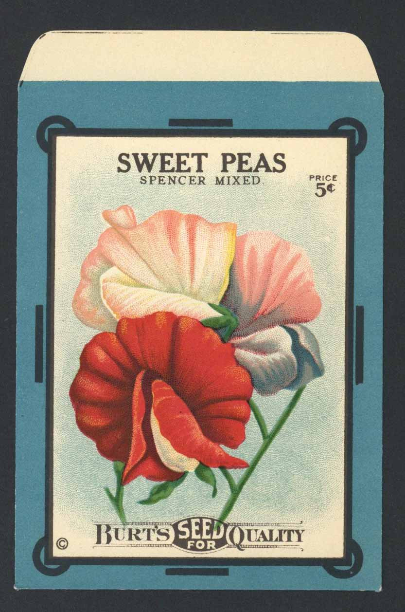 Sweet Peas Antique Burt's Seed Packet, L, Spencer Mixed