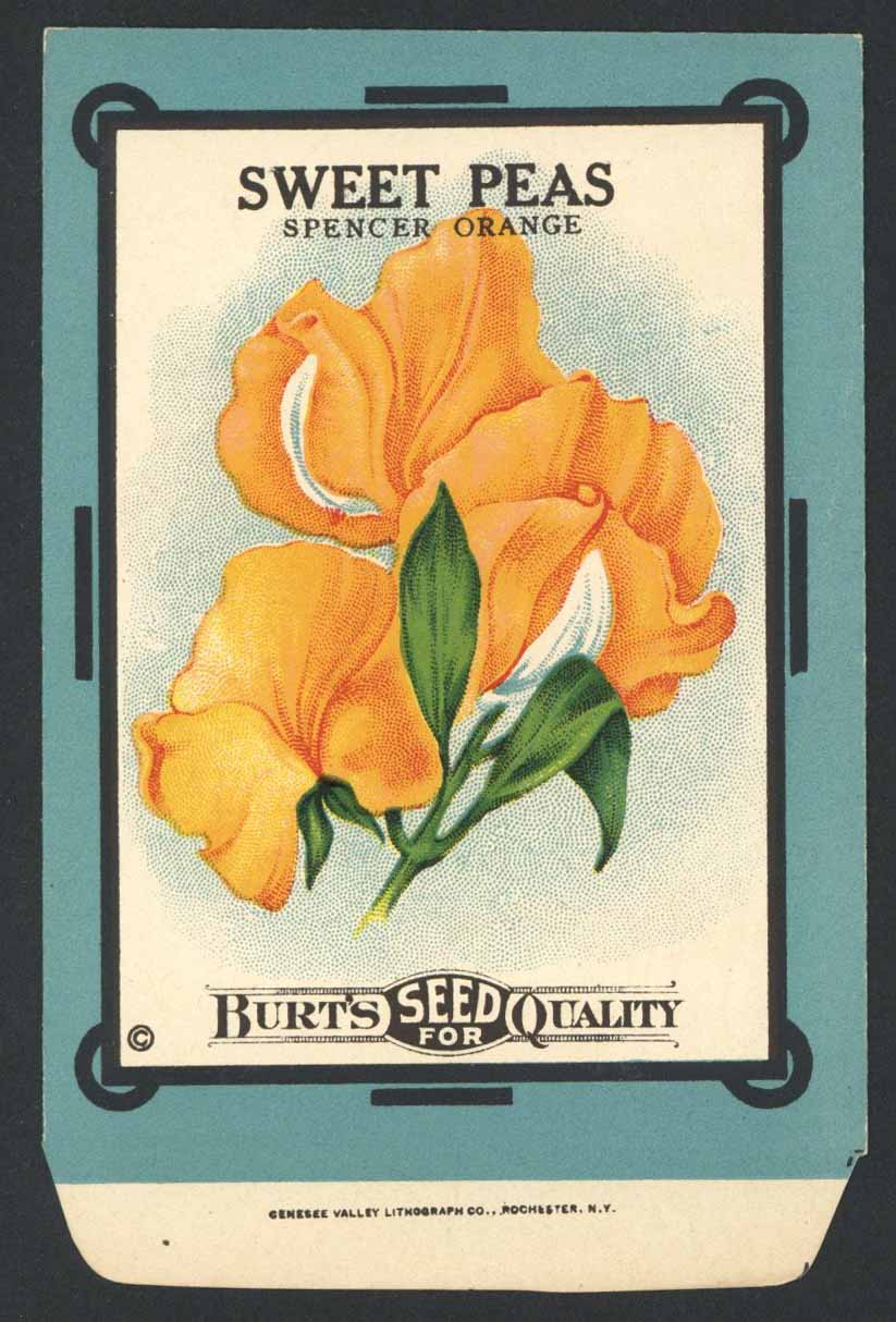 Sweet Peas Antique Burt's Seed Packet, L, Spencer O.