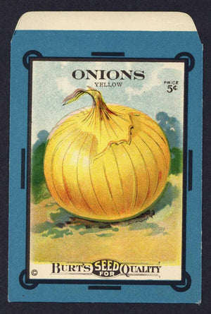 Onions Antique Burt's Seed Packet, Yellow, L