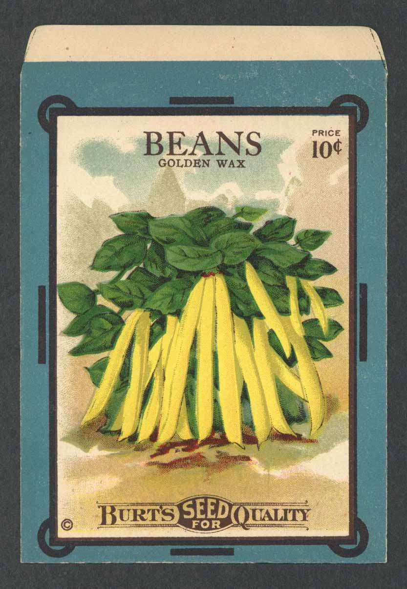 Beans Antique Burt's Seed Packet, Golden Wax, L