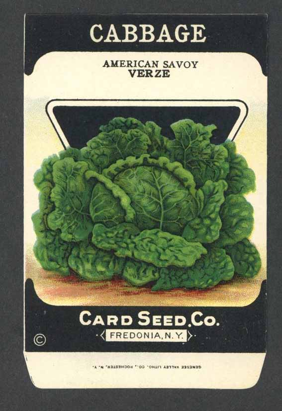Cabbage Antique Card Seed Co. Packet, American Savoy