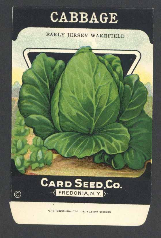Cabbage Antique Card Seed Co. Packet, Jersey Wakefield