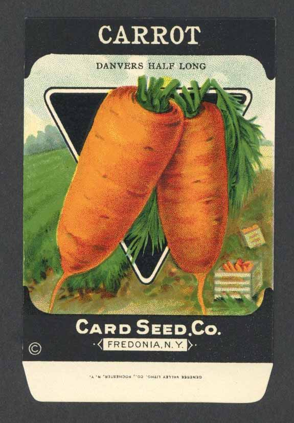 Carrot Antique Card Seed Co. Packet, Danvers Half Long