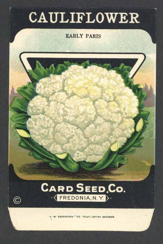 Cauliflower Antique Card Seed Co. Packet, Early Paris