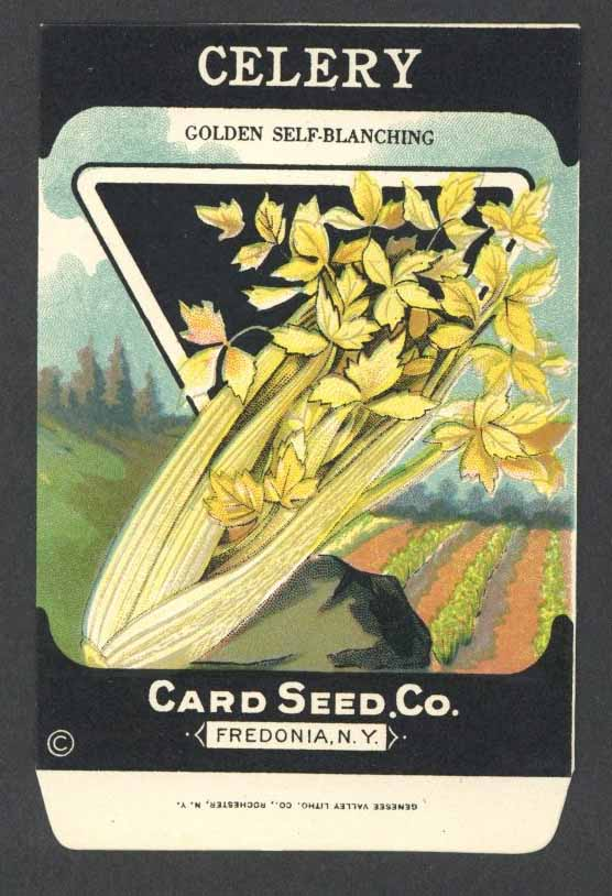 Celery Antique Card Seed Co. Packet, Golden