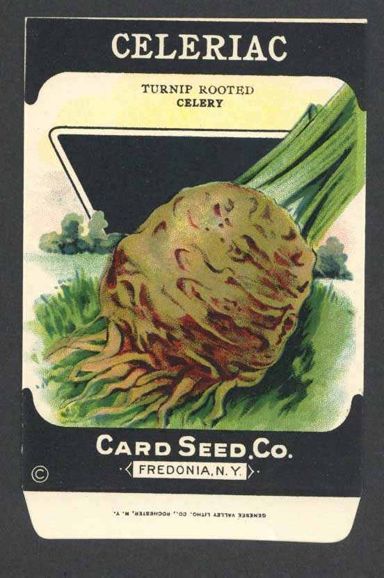 Celeriac Antique Card Seed Co. Packet