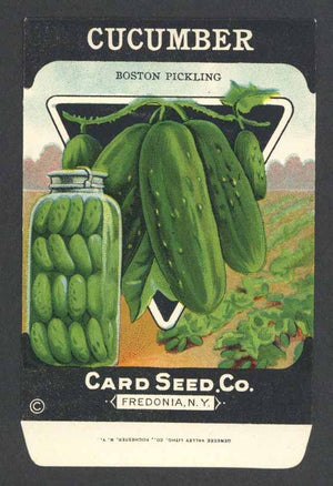 Cucumber Antique Card Seed Co. Packet, Boston Pickling