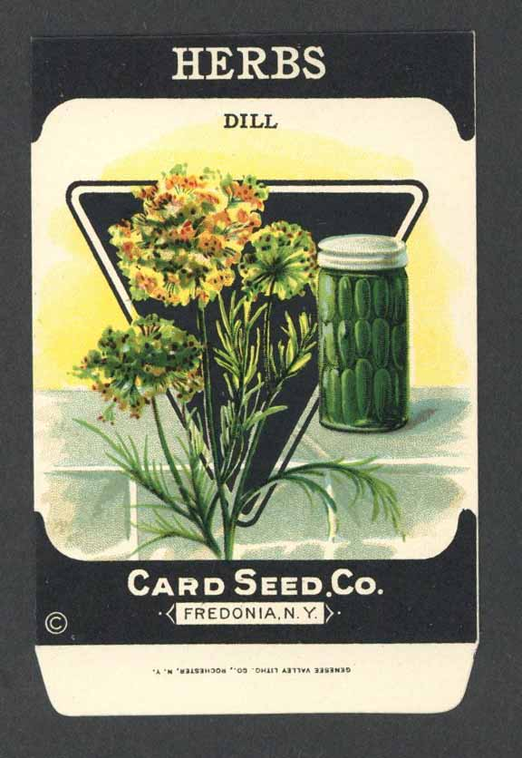 Herbs Antique Card Seed Co. Packet, Dill