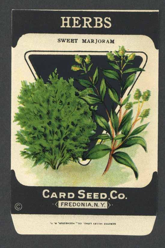 Herbs Antique Card Seed Co. Packet, Sweet Marjoram