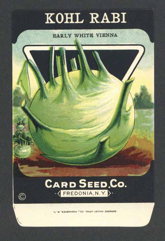 Kohl Rabi Antique Card Seed Co. Packet, White Vienna