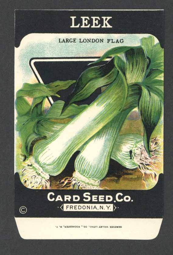 Leek Antique Card Seed Co. Packet