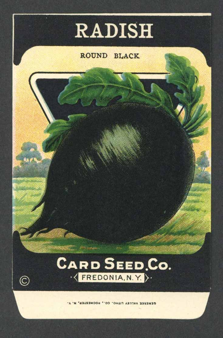 Radish Antique Card Seed Co. Packet, Round Black