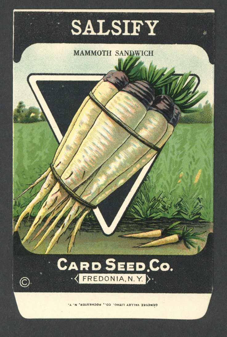 Salsify Antique Card Seed Co. Packet, Mammoth