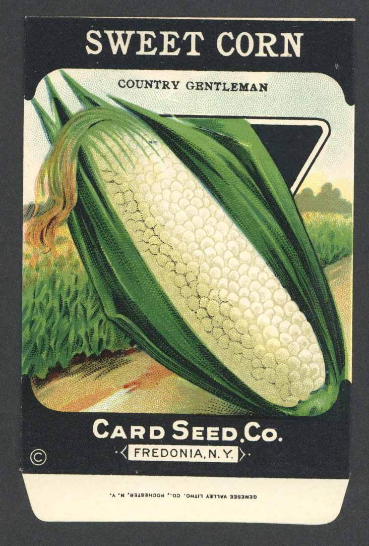 Sweet Corn Antique Card Seed Co. Packet, Country Gentleman