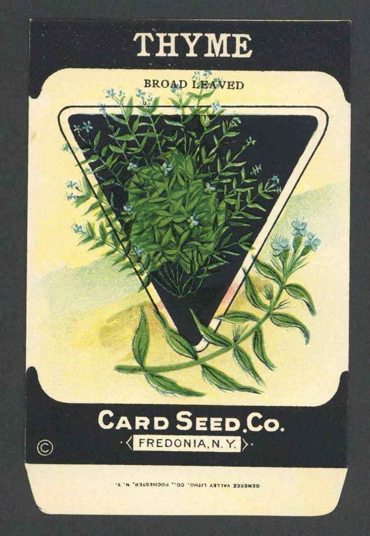 Thyme Antique Card Seed Co. Packet, Broad Leaved