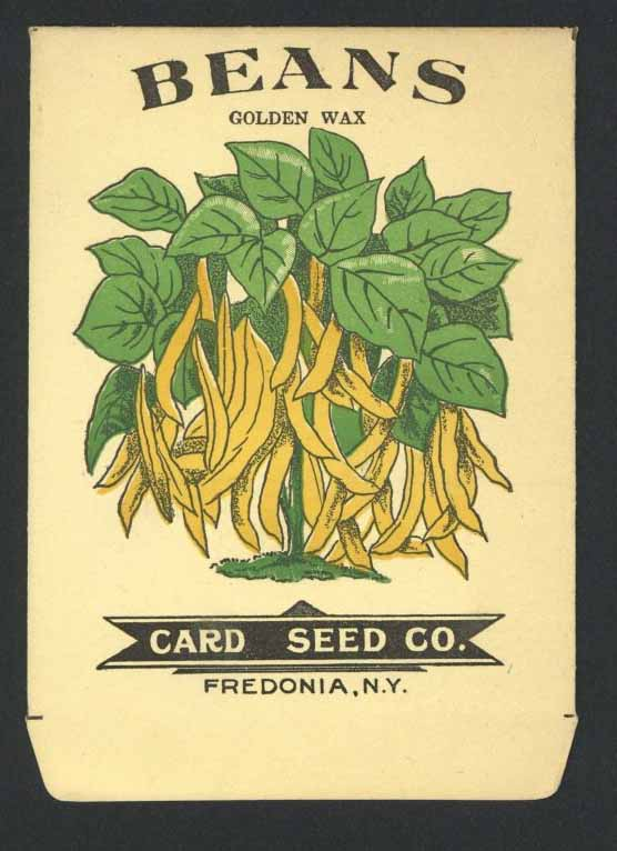 Beans Antique Card Seed Co. Packet, Golden Wax