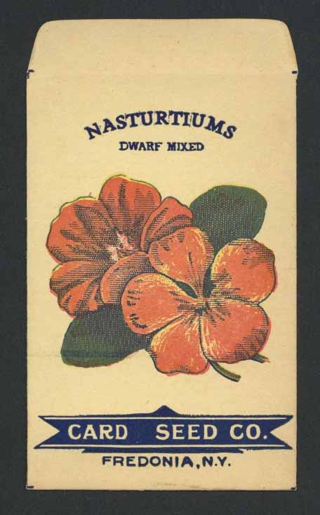 Nasturtiums Antique Card Seed Packet, Dwarf Mixed