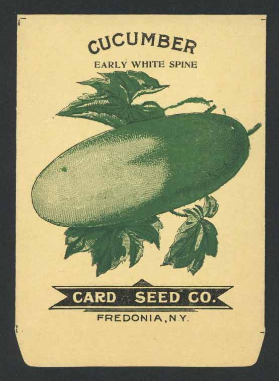 Cucumber Antique Card Seed Co. Packet, White Spine