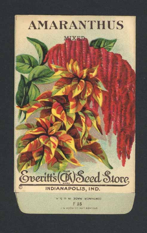 Amaranthus Antique Everitt's Seed Packet