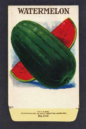 Watermelon Antique Stock Seed Packet