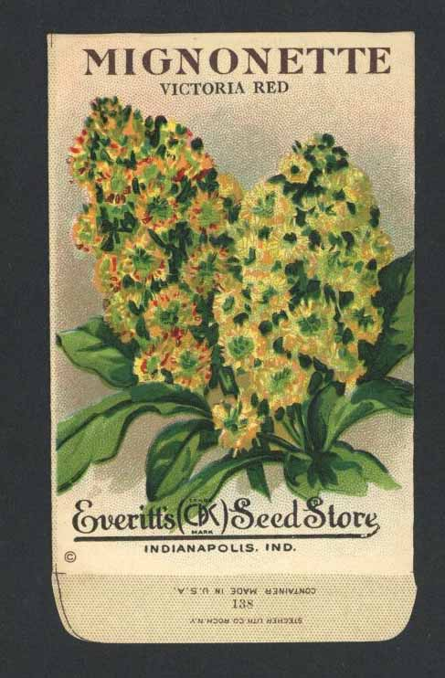 Mignonette Antique Everitt's Seed Packet