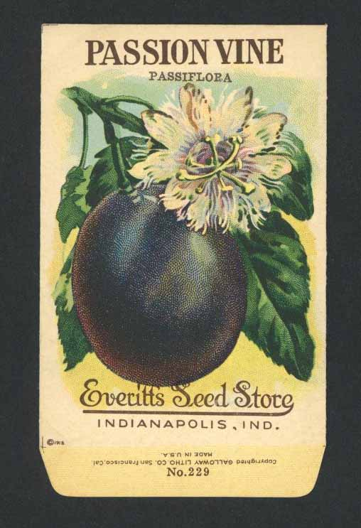 Passion Vine Antique Everitt's Seed Packet