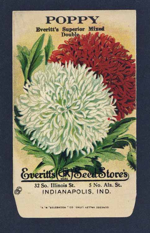 Poppy Antique Everitt's Seed Packet