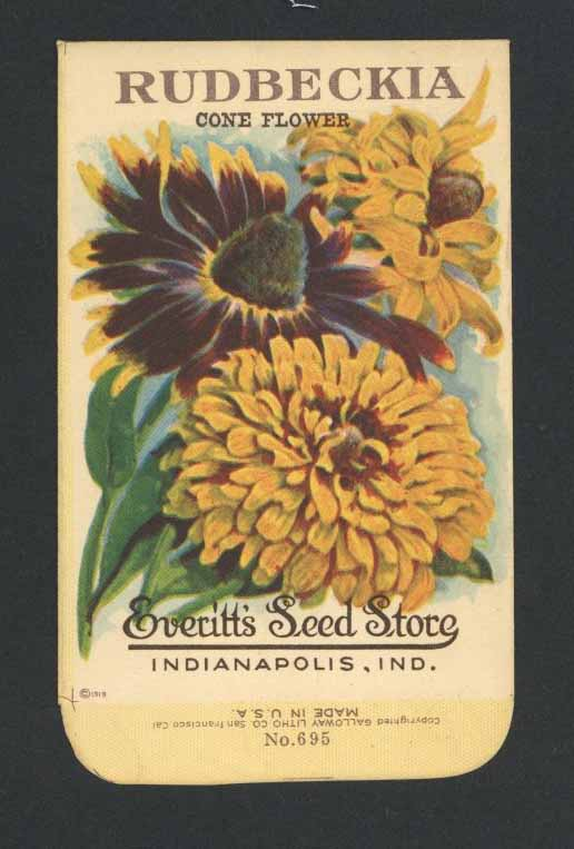 Rudbeckia Antique Everitt's Seed Packet