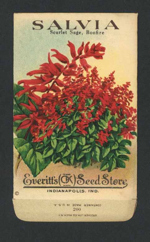 Salvia Antique Everitt's Seed Packet
