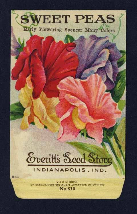 Sweet Peas Antique Everitt's Seed Packet, Many Colors