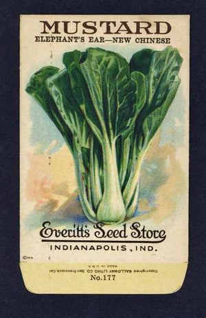 Mustard Antique Everitt's Seed Packet