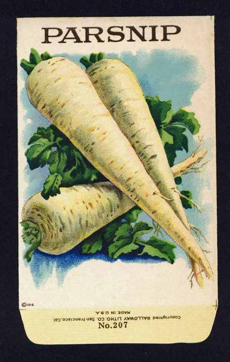 Parsnip Antique Stock Seed Packet