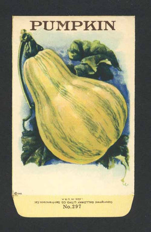 Pumpkin Antique Stock Seed Packet