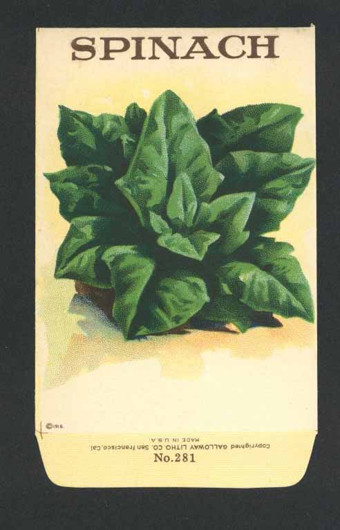 Spinach Antique Stock Seed Packet