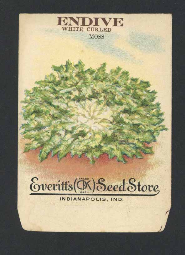 Endive Antique Everitt's Seed Packet