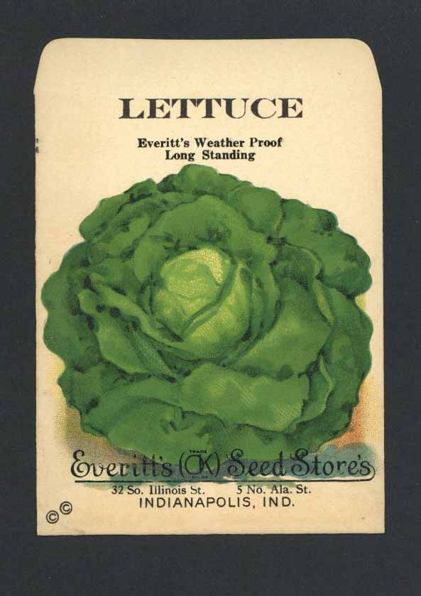 Lettuce Antique Everitt's Seed Packet