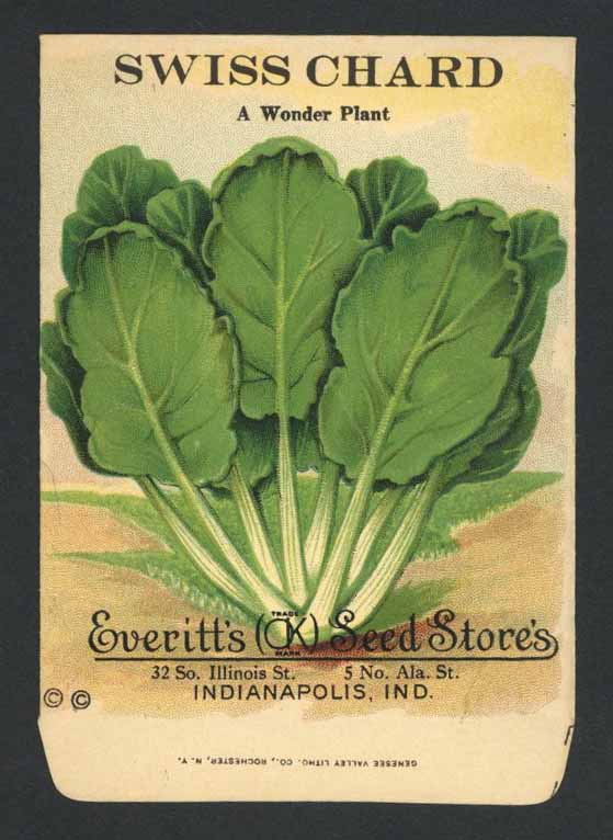 Swiss Chard Antique Everitt's Seed Packet, A Wonder Plant