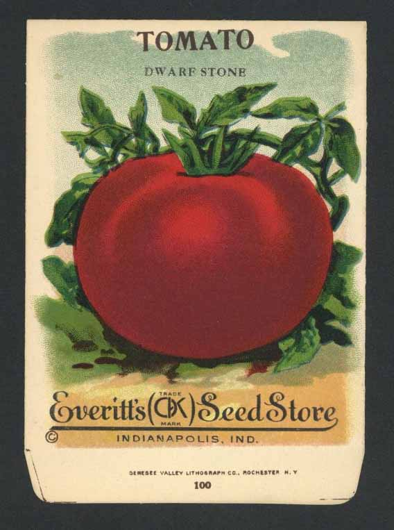 Tomato Antique Everitt's Seed Packet, Dwarf Stone, L