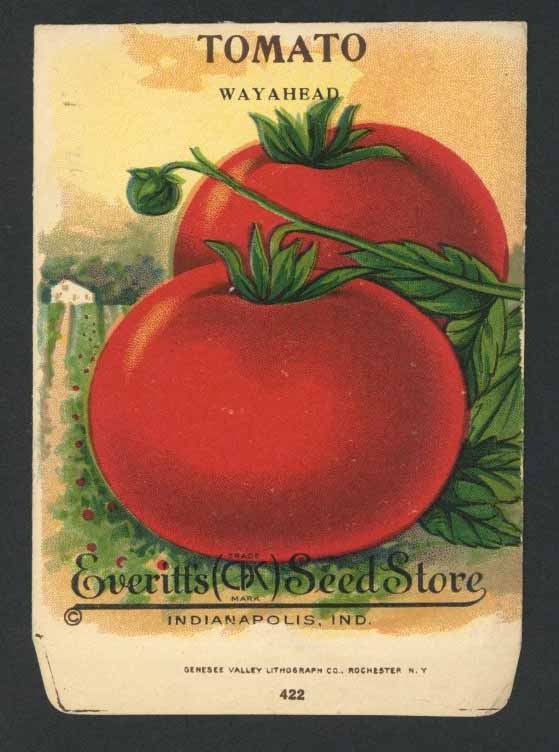 Tomato Antique Everitt's Seed Packet, Wayhead