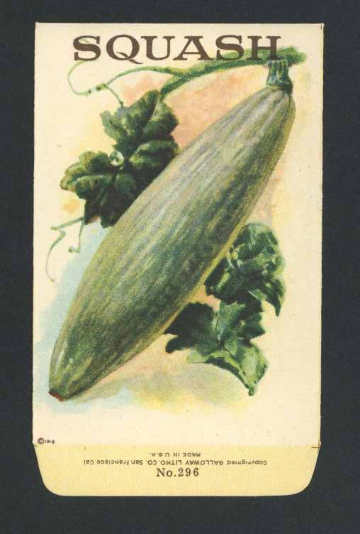 Squash Antique Stock Seed Packet