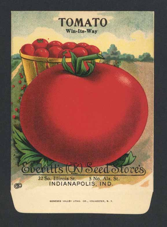 Tomato Antique Everitt's Seed Packet, Win-Its-Way