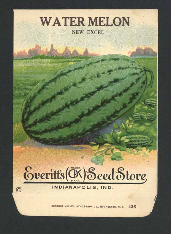 Watermelon Antique Everitt's Seed Packet, New Excel