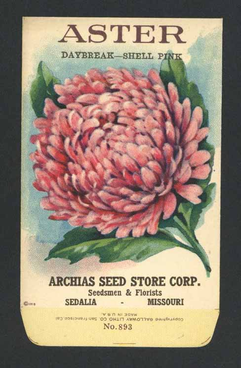 Aster Antique Archias Seed Packet, Daybreak