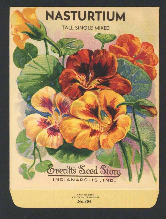 Nasturtium Antique Everitt's Seed Pack, Single Mixed